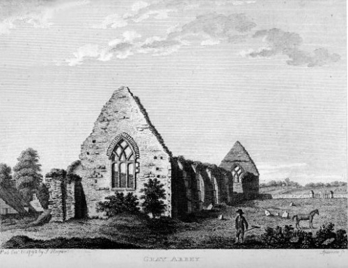 grey-abbey-kildare
