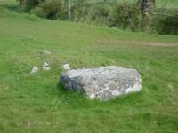 wart-stone-s