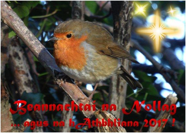 kildare-heritage-christmas-card